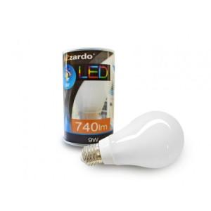 Żarówka LED 9W E27 AZzardo